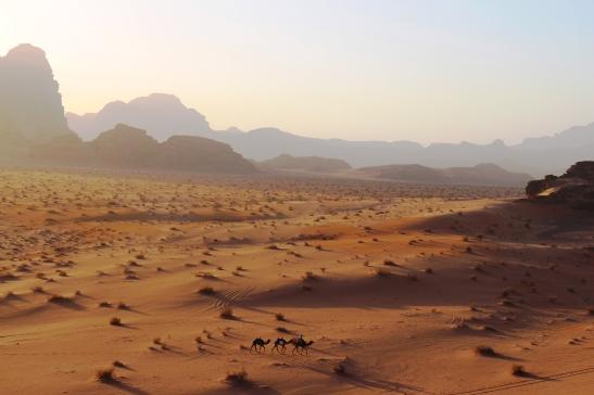 A Desert ship cruises through an ocean of sand