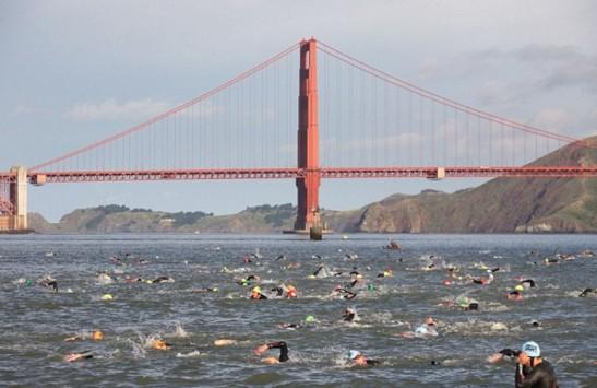 2c swim bridge